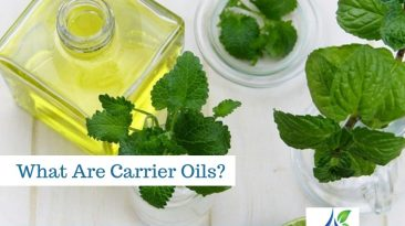 carrier oils 1 366x205 - Carrier Oils Essential Oils