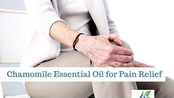 chamomile essential oil 1 344x193 - Home