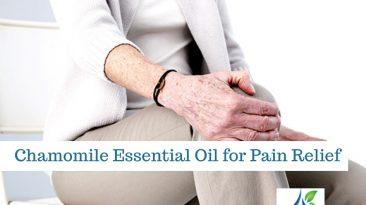 chamomile essential oil 1 366x205 - Chamomile Essential Oil